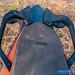 KTM-390-Adventure-30