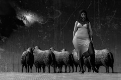 The shepherdess who turned her back on God (milena carbone) Tags: 3d africa art avatar sheep blackandwhite black bw storm woman illustration dress nomad night rain secondlife secondlifeart secondlifephotography slart slphoto slphotography thunder thunderstorm virtual world
