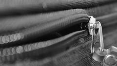 zipper (© mpg) Tags: mpg2020 macro closeup zipper zip macromondays shutted hmm