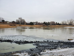 January 21, 2020 - A pond in Thornton on an overcast day. (LE Worley)