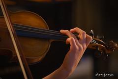Les doigts de la violoniste (guysamsonphoto) Tags: guysamson violon violin musician musicienne