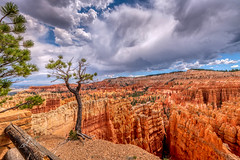 Bryce Canyon in Southern Utah (JuanJ) Tags: nikon d850 lightroom photoshop luminar art bokeh lens light landscape happy naturephotography nature people white green red black pink skyportrait location architecture building city square squareformat instagramapp shot awesome supershot beauty cute new flickr amazing photo photograph fav favorite favs picture me explore interestingness friends dof sunset sky flower night tree flowers portrait fineart sun clouds brycecanyon utah trees nikonfxshowcase fx nikonphoto