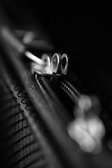 366 - Image 027 - Zipper... (Gary Neville) Tags: 366 366images 7th365 photoaday 2020 sony sonya7iii a7iii a7m3 90mm garyneville macromondays zipper