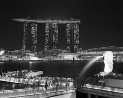 Marina Bay Sands and the Merlion (Zeb Andrews) Tags: pentax67 kodaktrix singapore nighttime cityscape urban southeastasia longexposure blackwhite famouscasinos mythicalcreatures zaahphoto havefilmwilltravel architecture