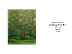 """Backyard Beech Tree • <a style=""""font-size:0.8em;"""" href=""""http://www.flickr.com/photos/124378531@N04/49451257056/"""" target=""""_blank"""">View on Flickr</a>"""