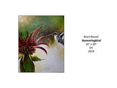 """Hummingbird • <a style=""""font-size:0.8em;"""" href=""""http://www.flickr.com/photos/124378531@N04/49451486227/"""" target=""""_blank"""">View on Flickr</a>"""