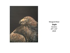 """Eagle • <a style=""""font-size:0.8em;"""" href=""""http://www.flickr.com/photos/124378531@N04/49451486522/"""" target=""""_blank"""">View on Flickr</a>"""
