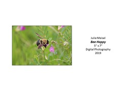 """Bee Happy • <a style=""""font-size:0.8em;"""" href=""""http://www.flickr.com/photos/124378531@N04/49451486647/"""" target=""""_blank"""">View on Flickr</a>"""