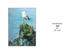 """Gull • <a style=""""font-size:0.8em;"""" href=""""http://www.flickr.com/photos/124378531@N04/49451486772/"""" target=""""_blank"""">View on Flickr</a>"""