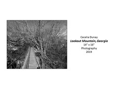 """Lookout Mountain, Georgia • <a style=""""font-size:0.8em;"""" href=""""http://www.flickr.com/photos/124378531@N04/49451487102/"""" target=""""_blank"""">View on Flickr</a>"""