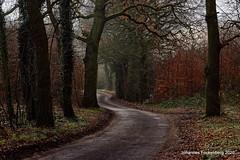 Heimweg (grafenhans) Tags: winter sony alpha sal slt feldweg 68 a68 18135 grafenwald alpha68 landscape natur nrw landschaft bottrop