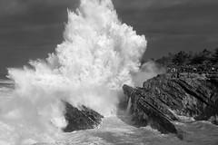Big Waves (Bill Young) Tags: oregon coast waves surf kingtide shoreacres