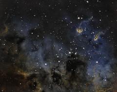 IC410_The Tadpoles Nebula (SpacePaparazzi.com) Tags: deepspace astroimage astroimages astro astromony nebula celestron celestrontelescope zwocameras zwo stars space tadpolenebula universetoday natgeospace universe nightscaper astroworld amateurastronomy ic410 spacepaparazzicom asiweek astrometrydotnet:id=nova3936553 astrometrydotnet:status=solved