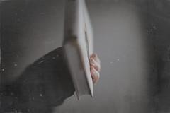 27 | 366 (Angie Lambert) Tags: 366 personalproject formyloveofbooks angielambert canongirl nothingisordinary