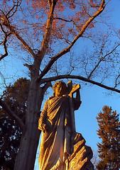 "Cincinnati - Spring Grove Cemetery & Arboretum ""Evening Light At Jesus & Cross"" (David Paul Ohmer) Tags: cincinnati ohio spring grove cemetery arboretum jesus cross evening light"