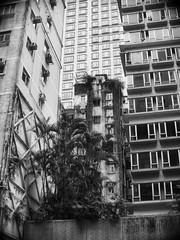 (a.pierre4840) Tags: olympus omd em10 micro43 cmount schneider kreuznach 25mm f095 vignetting architecture urban decay hongkong fotor skylum luminar3