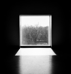 (Gabriella Ollandini) Tags: window minimal contrast shadow square winter monochrome bw blackandwhite analog analogica analogue ricoh hp5 ilford filmisnotdead filmphotography filmcamera istillshootfilm interior simplicity framed stark vintage view grain 35mm solitude quiet empty