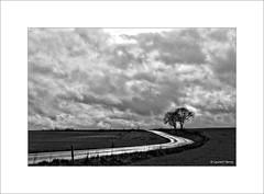 Après la pluie... (Laurent TIERNY) Tags: landscape nature street