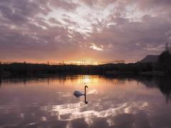 Capvespre a Graugès... (Felip Prats) Tags: berguedà graugès capvespre atardecer sunset nwn