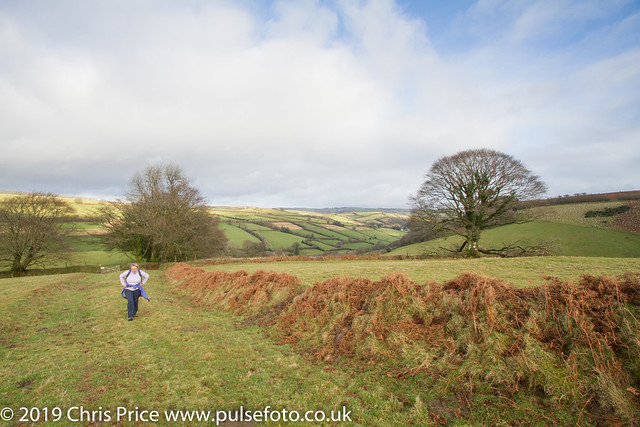 Walk by WInsford on Exmoor