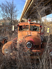 """""""Lion in the Grass"""" (Halvorsong) Tags: truck classic vintage old abandoned abandonment sad explore discover art rust crust rustandcr rustandcrust fireengine oldtrucks antique halvorsong projectamerica composition nashville usa decay beauty preservation contrast"""