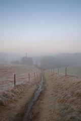 Path (Michel Antoni (swe)) Tags: vinter dimma winter fog sweden gothenburg fujifilm westcoast västkusten fujifilmxpro1 fujifilmxf182
