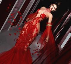 ♥ (♛Lolita♔Model-Blogger) Tags: lolitaparagorn tiffanydesigns blog blogger blogs beauty bodymesh bento bom
