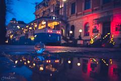 Untold Stories part1 (Fredrik Lindedal) Tags: tram puddle puddlegram reflection reflections city cityscape cityview water glassboll tree gothenburg göteborg lights building streetview street streetvision streetlight visitgothenborg lindedal sweden sverige