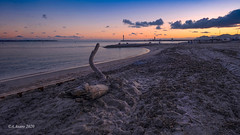 Wooden swan at sunset. (Tonino A) Tags: swan wood plage beach sunset coucher ciel himmel nuages sable borddemer seaside cannes côtedazur provence seascape fujixh1 14mm nwn bestcapturesaoi