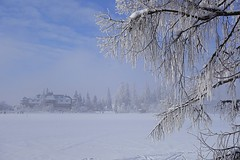 winter fog (majka44) Tags: winter snow frost frozen white landscape view hightatras slovakia nature building hotel people walk nice atmosphere day tree forest mood sky cloud blue tatry vysoketatry
