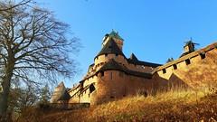 Le château du Haut-Koenigsbourg (mamietherese1) Tags: 67 earthmarvels50earthfaves world100f