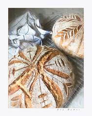 Fresh bread (Krasne oci) Tags: bread baking food flour kitchen artistic artisanbread evabartos photographicart home organic