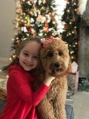 Nala is ready for Santa