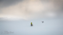 Sledge Riders on the Storm (christianschmaler) Tags: husky huskies dogsledge expedition hundeschlitten hundeschlittenführer rider landscape landschaft sturm storm fog nebel schneegestöber drivingsnow sky himmel licht light winter ice eis mountain berg norway norwegen musher nature natur white weiss