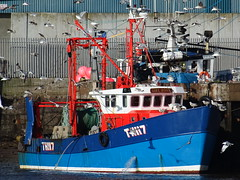MFV GIRL RONA TH117  Fishing (Pelagic Trawler)  Call Sign MCAK6 (MMSI: 235004896) (guyfogwill) Tags: 1980 2020 bateau bateaudepêche bateaux boat boats coastal coastline devon devoran dschx60 england europe fisherman fishingboat fishingvessel flicker fogwill gb gbtnm gbr gbr000a23504 girlrona greatbritan guy guyfogwill harbour marine maritime mcak6 midwaterottertrawls mmsi235004896 nautical pelagictrawler plage port river riverbeach riverteign shaldon sony southofengland southwest teignestuary teignbridge teignmouth teignmouthapproaches th117 theshaldives tq14 uk unitedkingdom vessel visicksofdevoran winter workboat