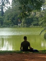 São Paulo Parque Ibirapuera MEDITATION (LUIZ PAULO São Paulo's Eyes) Tags: sãopaulo parqueibirapuera ibirapuera brasil brazil brazilians jovem youth meditação meditation