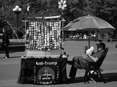 TRUMP RESISTANCE (krista ledbetter) Tags: newyorkcity city street nyc manhattan