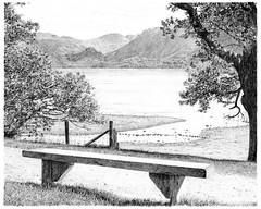 Barbara's Bench