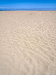 Beach_Vert_DSF1921