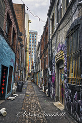 Graffiti Alley, 2019.10.20 (Aaron Glenn Campbell) Tags: 3xp ±3ev hdr strongalley downtown knoxville knoxcounty tennessee graffitialley autumn fall architecture buildings gritty grungy alley murals art sony a6000 ilce6000 mirrorless sigma 19mmf28exdn wideangle primelens emount nikcollection viveza colorefexpro