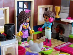 You're letting the heat out (back2s0ul) Tags: lego friends snow resort chalet andrea minidoll