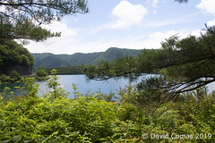 Fujikawaguchiko - Saiko Lake (CATDvd) Tags: nikond7500 日本国 日本 stateofjapan nippon niponkoku nihonkoku nihon japón japó japan estatdeljapó estadodeljapón catdvd davidcomas httpwwwdavidcomasnet httpwwwflickrcomphotoscatdvd july2019 landscape paisaje paisatge bosc bosque forest lago lake llac montaña mountain muntanya cincllacsdelfuji cincolagosdelfuji fujifivelakes fujigoko fujikawaguchiko fujikawaguchikomachi 富士河口湖町 prefecturadeyamanashi yamanashiprefecture yamanashiken 山梨県 saikolake westernlake 西湖 llacsai lagosaiko