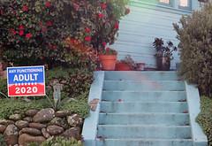Oakland CA (eks4003) Tags: trump prez democrat republican vote election signage oakland