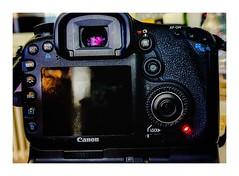 AF-on BBF Back Button FOCUS. EOS-7D Canon (eagle1effi) Tags: canon7dmarki back backbuttonfocus bbf photopedia helpline 7d eagle1effi excellent photo mygear ausrüstung geräte camera kamera owner 2020 canoneos7d eos7d dslr canon7d canon