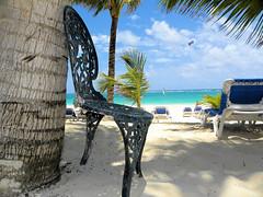 What supports what ? (alainazer) Tags: puntacana dominicana eau acqua water océan ciel cielo sky plage playa spiaggia beach tree arbre albero palm palmier palma