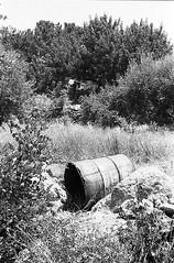 f80_119_2 (Ghostwriter D.) Tags: kreta crete 2018 nikonf80 blackandwhite blackwhite analog film greece