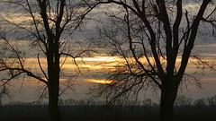 Небесное кружево / Sky lace (Владимир-61) Tags: зима декабрь природа вечер закат небо деревья облака свет солнце ветки winter december nature evening sunset sky tree cloud light sun branch russia sony ilca68 minolta75300