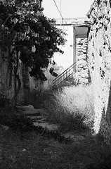 f80_119_19 (Ghostwriter D.) Tags: kreta crete 2018 nikonf80 blackandwhite blackwhite analog film greece agiosioannis