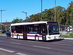 Mercedes Citaro C2 LE Ü - RGTR (Altmann 6000) (Pi Eye) Tags: mercedes o530 citaro c2 citarole luxembourg avl vdl multiplicity rtgr letzebuerg bus