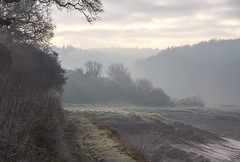 Leeaving Sea Mills behind (John (Thank you for >2 million views)) Tags: landscapephotography footpath riveravon misty mistymorning nature trees leighwoods woodlands riverbank emotion solitude tranquil cold seamills bristol southwestengland